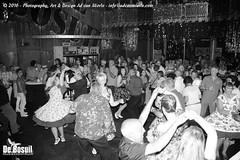 2016 Bosuil-Het publiek bij de 30th Anniversary Steady State 58-ZW