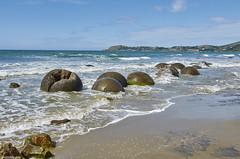 Moeraki boulders (@robinlautier) Tags: newzealand nz travel trip explore discover nikon d5100 landscape paysage beach plage sea ocean mer