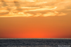 218#365 Golden (Fabio75Photo) Tags: sand oro arancio ora tramonto sunset cielo sky nuvole colors colori blu mare infinito calma pace