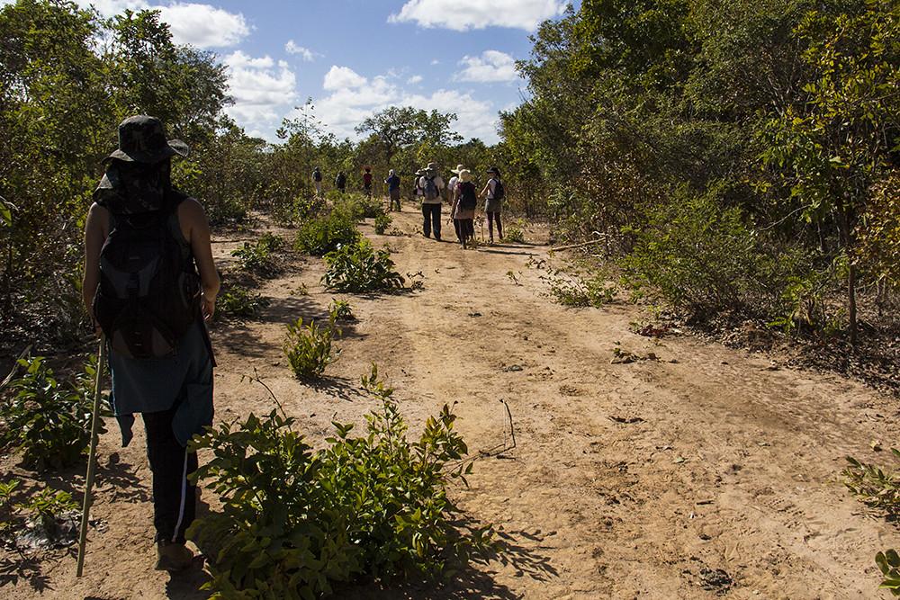 Caminho de Sagarana a Morrinhos