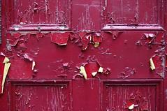 2016_0720The-Old-Red-Door0002 (maineman152 (Lou)) Tags: found used restore giveaway salvage freestuff olddoor refinish olddoors tearingdown westpond recyclereuse buildingteardown useddoors