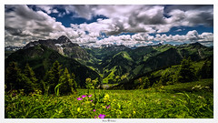 Relaxation (Photo Holica) Tags: sky panorama sunlight alps flower classic field 30 clouds zeiss landscape high long exposure heaven sony horizon himmel hills berge nd alpen alpha alpin horizons langzeitbelichtung explored 7m2