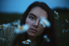 The garden of your soul.  331/365 (aleah michele) Tags: wildflower flower garden night evening dark blue blues soul chaos wildflowers grow daisy aleahmichele aleahmichelephotography adventure 365 365project emotion eyes emerge empty explore emotive evergreen quiet story sad soft softlight portrait conceptual conceptualportrait concept calm cold color chill feild field vulnerable