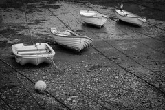 Cemaes, Anglesey (Trevor King 66) Tags: cemaes anglesey wales boats rope nikon d3100 rowingboat blackandwhite mono