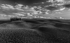 most popular viewpoint (Karl-Heinz Bitter) Tags: 2008 toskana monochrom landscape landschaft valdorcia italy clouds autumn fields trees sky himmel wolken acker italien tuscany fineart lights shadow fine art