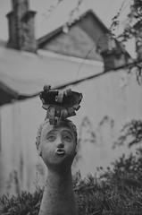 fryzura wystrzaowa (PanMajster) Tags: sculpture rzeba wystrzaowy firecracker fryzura hairstyle haircut hair black white bw pentax k5 bokeh