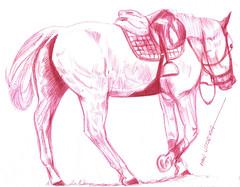 caballo a lapicero (ivanutrera) Tags: draw dibujo drawing dibujoalapicero dibujoenboligrafo horse caballo animal boligrafo lapicero pen cuadrupedo sketch sketching ilustracion