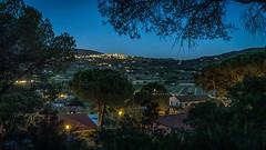 Impression of Elba - View to Capoliveri (lichtspur) Tags: elba capoliveri pine pinien nacht night dmmerung lowlight colours farben dunkel insel summer isle mediterranean mediterran toscana impressioni isola delba