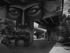 Face (geowelch) Tags: kingst east toronto urbanfragments urbanlandscape wallart newtopographics blackandwhite 120 film mediumformat 645 portra400bw c41 fujigs645s epsonperfection4870photo