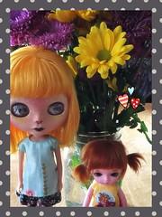 Favorites (LadyKat16) Tags: primadollymarigold blythedoll blythe latiyellow latidoll lati