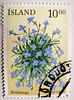 great stamp Iceland 10 kr. (Lobelia erinus, Brúdarauga, Edging Lobelia, Kaplobelia, Männertreu, Lobélie érine, 六倍利, Fiore Cardinale, Лобелия эринус, ルリミゾカクシ) frímerki Island postage  Islande timbre почтовая марка Исла́ндия Island Briefmarken 冰岛 邮票 selo (stampolina, thx for sending stamps! :)) Tags: flower fleur island iceland islandia stamps flor stamp blume fiore blomst timbre postage islande 花朵 selo izland sello kwiat islanda ختم briefmarken männertreu islândia 邮票 ijsland frimärke frímerki francobolli islanti postzegels laflor pullar frimærke znaczek lobeliaerinus スタンプ איסלנד postimerkkejä アイスランド izlanda ルリミゾカクシ islandija edginglobelia 冰岛 марка בולים ισλανδία žigi आइसलैंड أيسلندا цвето́к แสตมป์ 六倍利 γραμματόσημα ไอซ์แลนด์ bélyegek почтовая antspaudai pečiatka razítka टिकटें исла́ндия zīmogi brúdarauga kaplobelia lobélieérine fiorecardinale лобелияэринус