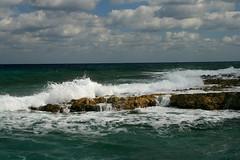IMG_5546 (PicNic Cards) Tags: ocean waves caves palmtrees caribbean caymanbrac