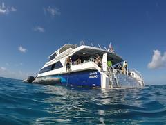 Notre bateau de plongée