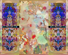 Optimism :) (virtually_supine) Tags: abstract collage photomanipulation blossom creative ivy textures montage layers digitalmanipulation blending solanum hss patternanddecoration pse9 sliderssunday photoshopelements9 ivybyxandram kreativepeopletreatthisno73fridaymarch27thursdayapril3 pse9effectsaccentuatededgescustominvert
