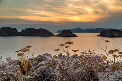 Majorca Sunset (SirStef) Tags: ocean sunset sea islands spain country foreground majorca balearicislands santaponsa