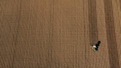 Surcos - Grooves  01 (ricardocarmonafdez) Tags: color green canon fly sevilla ngc balloon grain fields cereales campos globo vuelo campiña 2015 aljarafe 60d aznalcóllar aerostación ricardocarmonafdez vegaguadiamar