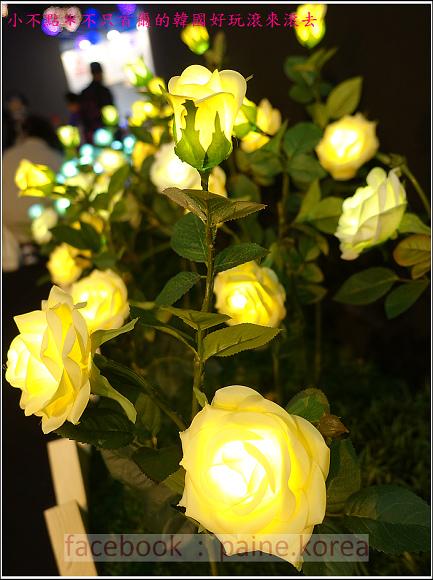 高陽國際花卉博覽 (61).JPG