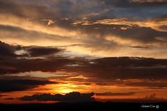 Silenciosamente (antoninodias13 (AUSENTE)) Tags: pordosol luz sol portugal natal canon sigma famlia nuvens ocaso aldeia brisa luminosidade fimdetarde silhuetas camadas beirabaixa sert tonalidades convvio amizades envergonhado serenamente silncios sarnadas antoninodias13