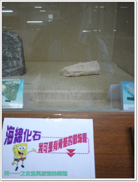 台東成功景點三仙台台東縣自然史教育館貝殼岩石肉形石image027