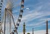 Elévations (Positif+) Tags: france iledefrance lieux paris scènesderue techniquephoto îledefrance tuileries concorde manège obelisque