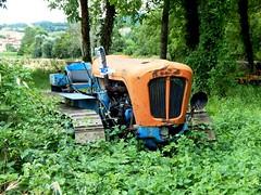 Lamborghini (Tazio 27) Tags: rusty scrap lamborghini trattore rottame abbandono cingolato agricolo