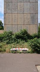 2016-07-30-berlin (kwiatku) Tags: berlin concret plants