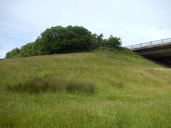 Hill by the A55, 2016 Jul 06 (Dunnock_D) Tags: uk bridge trees england sky cloud green grass grey woods cloudy unitedkingdom britain fields expressway bushes a55 northwalesexpressway