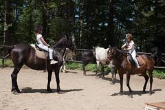 5D_IMG_6604 (Jeroen Kransen) Tags: bulgarije bulgaria    horse horseback equestrian horseriding paardrijden paardrit rodopen rhodopes