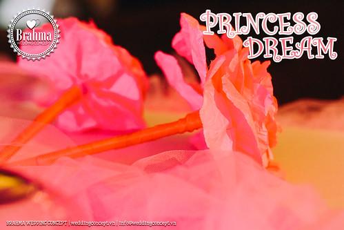 Braham-Wedding-Concept-Portfolio-Princess-Dream-1920x1280-17