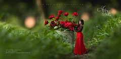 AISHRIN ALI (AP_pixel) Tags: red art love nature rose manipulation pixel gown bangladesh bangladeshi xim artpic loverose redgown aishrin tahmidur