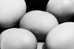 fresh eggs (Chris_DP) Tags: fresh eggs egg black white light dark still life exposure painting food nature natural