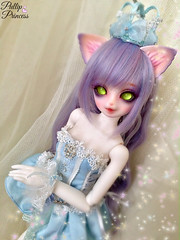 Pampered Kitty (Pullipprincess) Tags: bjd balljointeddoll abjd asianballjointeddoll neko bakeneko cat nekomimi anthro cute kawaii doll dolls kiddelf luts msd kidzuzudelfcorni corni angellstudio westerndressfantasy kid zuzu delf