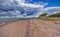 Am Bodden (garzer06) Tags: bodden greifswalderbodden wolken himmel wolkenhimmel blau wasser sand strand steine grn weis kste kstenlandschaft deutschland inselrgen mecklenburgvorpommern insel vorpommern rgen wellen strandsand