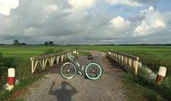Myanmar, Yangon Region, Southern District, Kawhmu Township, Tha Yet Taw Village Tract (Die Welt, wie ich sie vorfand) Tags: myanmar burma bicycle cycling yangon rangoon yangonregion southyangondistrict kawhmutownship thayettaw bridge shadow myself surly steamroller southerndistrict