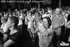 2016 Bosuil-Het publiek bij de 30th Anniversary Steady State 96-ZW