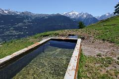 Val d'Aosta - Valle Centrale: Thouraz, l'abbeveratorio (mariagraziaschiapparelli) Tags: valdaosta thouraz allegrisinasceosidiventa camminata escursionismo montagna mountain estate panorama