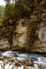 Johnston Canyon-1170.jpg (CraigG144) Tags: alberta banffnationalpark johnstoncanyon