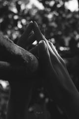 Divenire (Diego V - Fotgrafo) Tags: manos chica blanco y negro black white girl hand diego velando andrade v