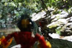 The Chronicler's Company (Thibaut_Piruk) Tags: takua velika matoran lego bionicle diorama moc