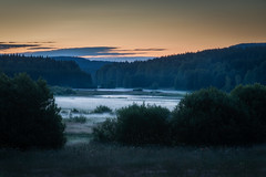 Mist kissed mire (PixPep) Tags: mist mire nature landscape green summer pixpep rural sunset blue night