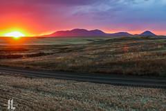 IMG_8651 (larzz4444) Tags: chester montana winterwheat chestermontana gleaner drylandfarming sweatgrasshills joplinmontana wheatharvest sunset