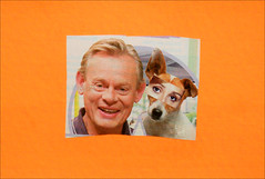 Mail Art Postcard No. 4538. (Dave Whatt) Tags: postcard mailart bight colours fluorescent humour collage tv jackrussell eyes actors