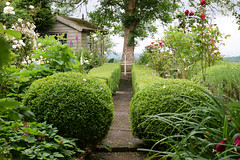 Amberley Open Gardens 2016 (Mark Wordy) Tags: amberleyopengardens 2016 westsussex village cottagegarden path bench tree box hedges caminhos