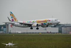 Transavia - PH-HZL - B737-800 (Aviation & Maritime) Tags: phhzl transavia boeing boeing737 b737 b737800 boeing737800 ams eham amsterdam amsterdamairportschiphol amsterdamairport schiphol thenetherlands