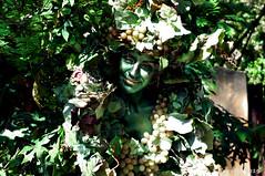 Smiling DiVine (Freddy Buzz) Tags: smile garden divine animalkingdom infocus highquality