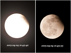 Total Lunar Eclipse 26+27 (golden0712) Tags: eclipse sony 4 taiwan april taichung total lunar a300  2015