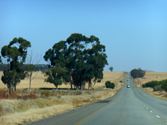 Swartland Road (RobW_) Tags: africa road march south wellington western tuesday cape paarl r45 2015 swartland mar2015 10mar2015