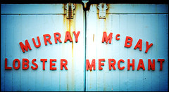 Murray McBay Lobster Merchant (Aimless Alliterations) Tags: uk signs coast scotland canonpowershota610 johnshaven angusmearns