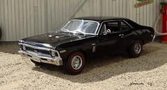 1969 Chevrolet Nova SS Coupe (JCarnutz) Tags: chevrolet 1969 diecast novass 124scale danburymint
