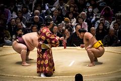 Sumo in Osaka-29 (Rodrigo Ramirez Photography) Tags: japan amazing traditional professional tournament osaka sumo yokozuna ozeki makuuchi hakuho sumotori sumotournament maegashira reikishi harumafuji topdivision